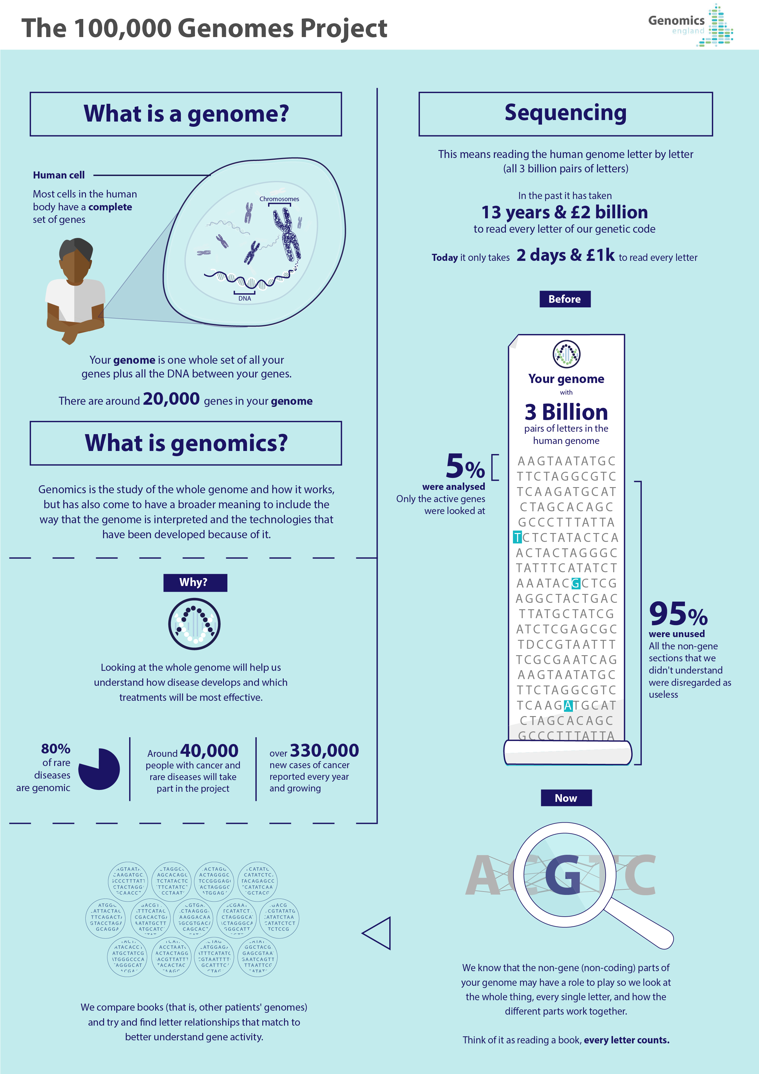 What is a genome?